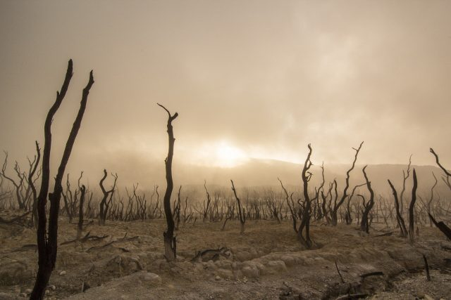 Nine climate tipping points now active warn scientists