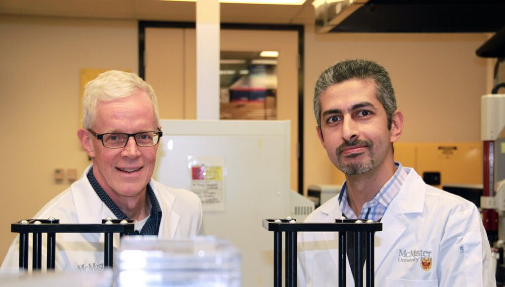 Potent antimicrobial found that shows promise in fighting staph infections
