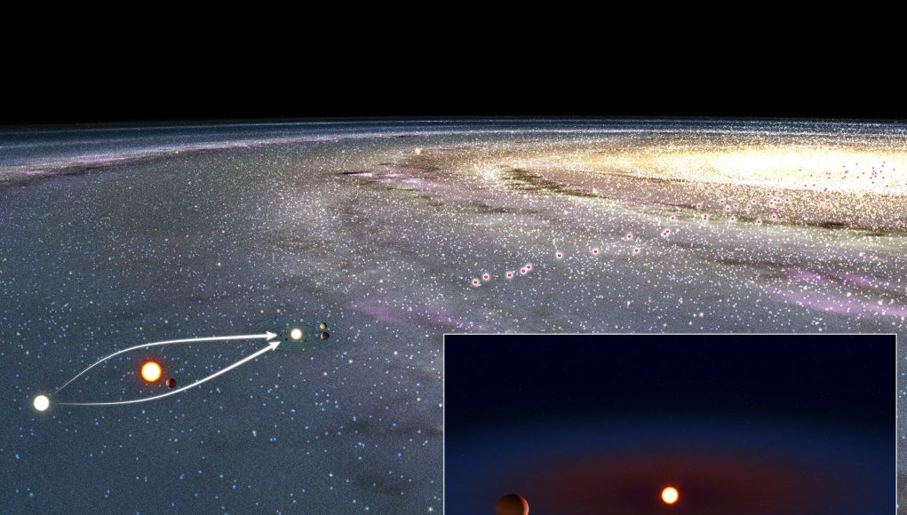 Worldwide observations confirm nearby lensing exoplanet