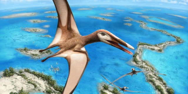 95 million year old fossil reveals new group of pterosaurs