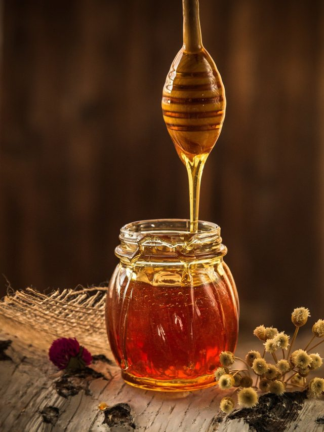 How a Manuka honey sandwich could be the key to fighting infections