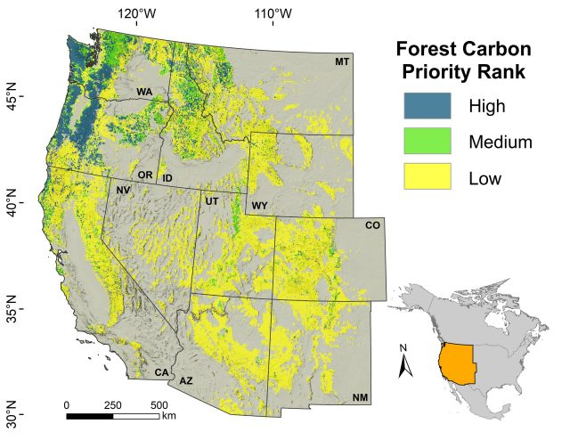 Researchers find some forests crucial for climate change mitigation biodiversity scaled