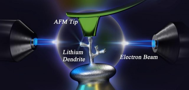 A new method to study lithium dendrites could lead to better safer batteries
