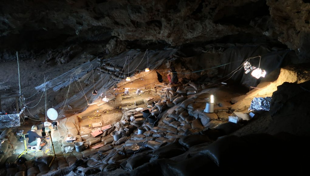 Early modern humans cooked starchy food in South Africa 170000 years ago scaled