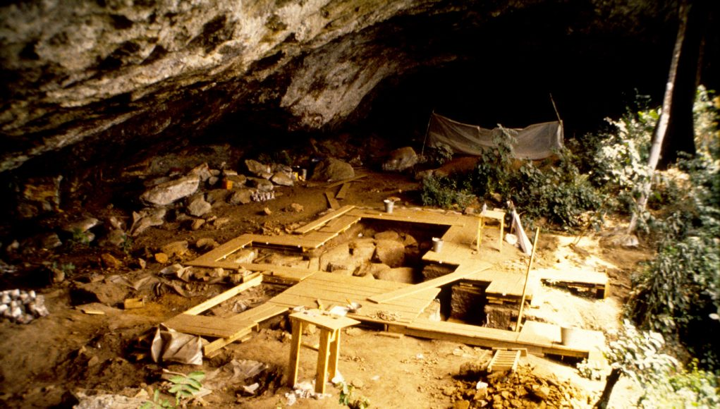 First ancient DNA from West Africa illuminates the deep human past scaled