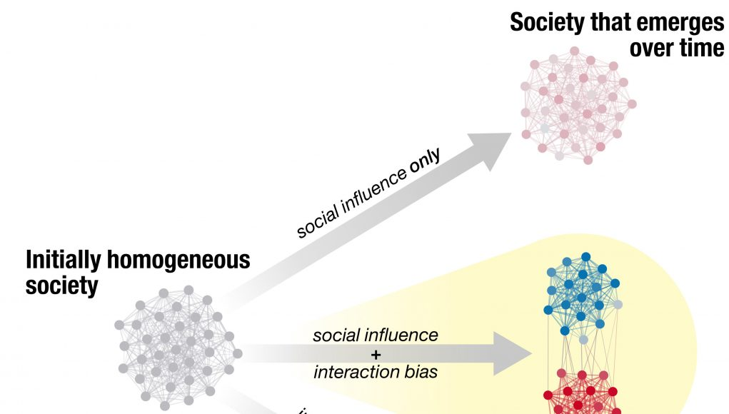 Of ants and men Ant behavior might mirror political polarization scaled
