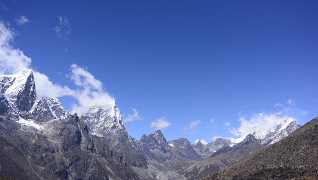 Plant life expanding in the Everest region scaled