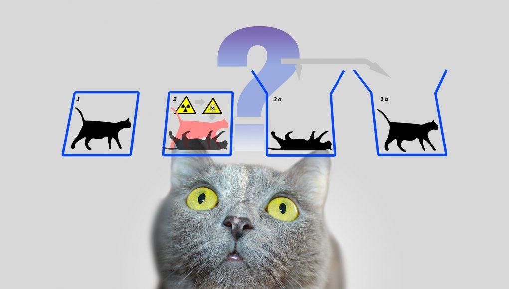 Deconstructing Schrödingers cat