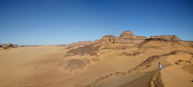 Fish in the Sahara Yes in the early Holocene