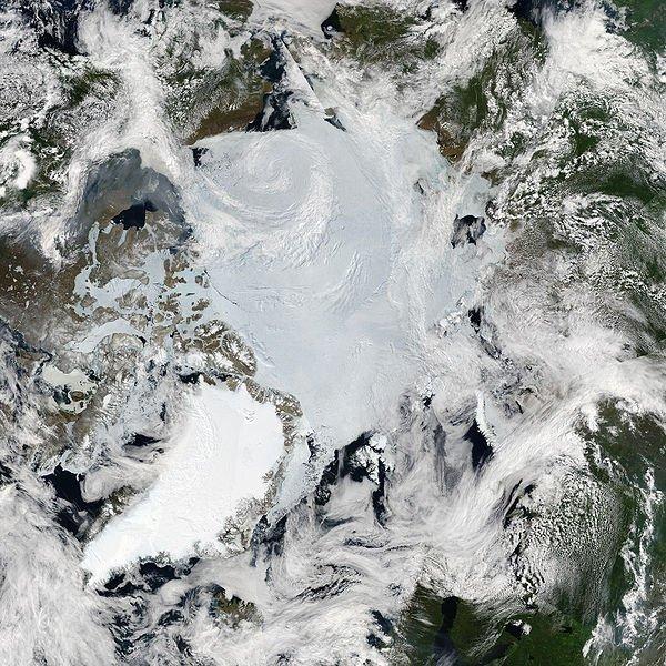 Global science team on red alert as Arctic lands grow greener