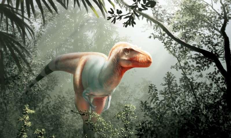 Meet T Rexs older cousin