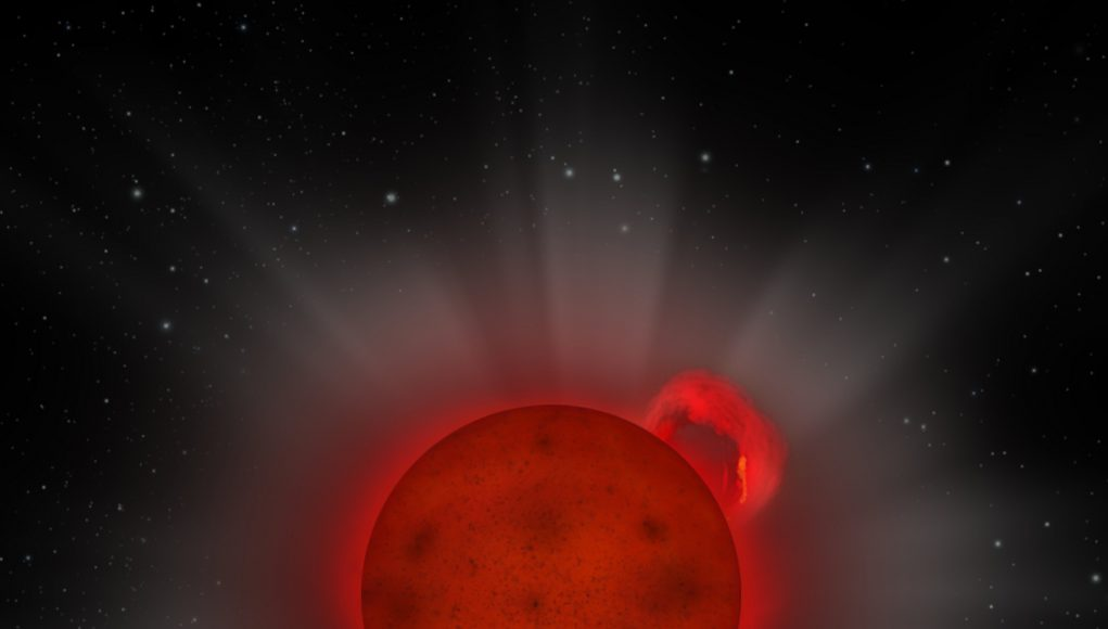 XMM Newton reveals giant flare from a tiny star scaled