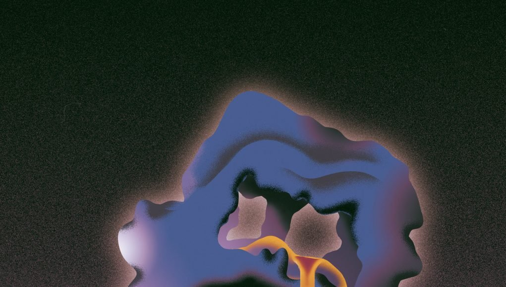Researchers discover first protein that regulates fatty acid synthase scaled