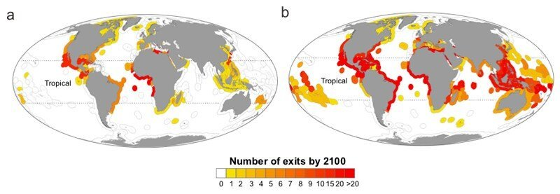 Researchers examine nations losing fish species due to climate change