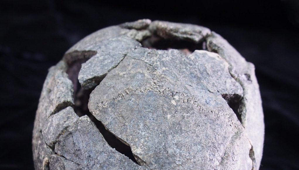 Smallest Homo erectus cranium in Africa and diverse stone tools found at Gona Ethiopia