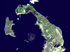 Tree rings could pin down Thera volcano eruption date