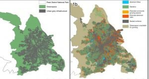 Urban land could grow fruit and veg for 15 per cent of the population research shows