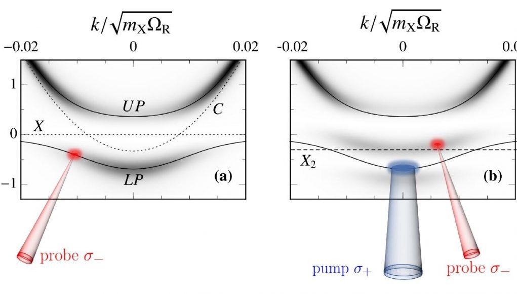 Applying quantum impurity theory to quantum fluids of light
