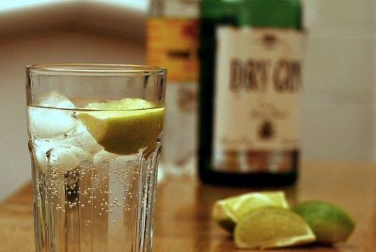 Astronomers define the really habitable zonePlanets capable of producing gin and tonic