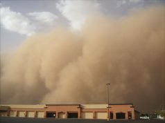 Impact of a second Dust Bowl would be felt worldwide