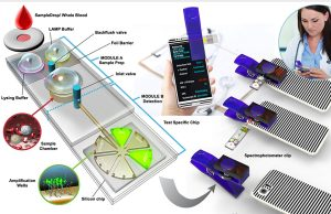 Inexpensive portable detector identifies pathogens in minutes