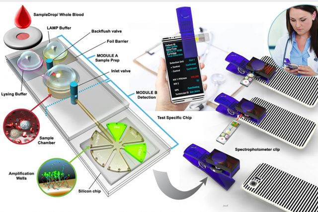 Inexpensive portable detector identifies pathogens in minutes