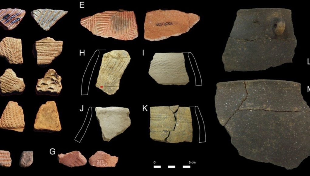 Molecular and isotopic evidence of milk meat and plants in prehistoric food systems