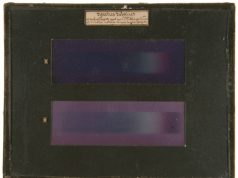 Mystery solved The origin of the colors in the first color photographs