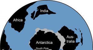Traces of ancient rainforest in Antarctica point to a warmer prehistoric world scaled