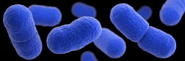 Vulnerable cells armor themselves against infection by depleting surface cholesterol