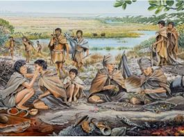 Migration patterns reveal an Eden for ancient humans and animals