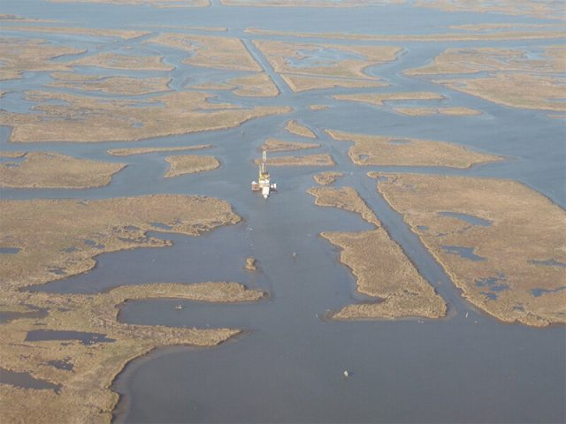 Mississippi Delta marshes in a state of irreversible collapse study shows