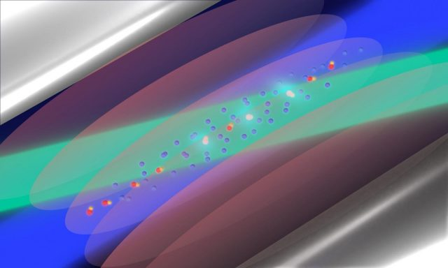 No evidence of an influence of dark matter on the force between nuclei
