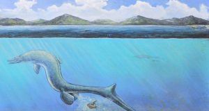 First egg from Antarctica is big and might belong to an extinct sea lizard