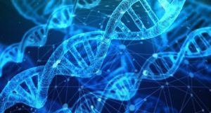 Physical link between RNA processing and epigenetic silencing discovered