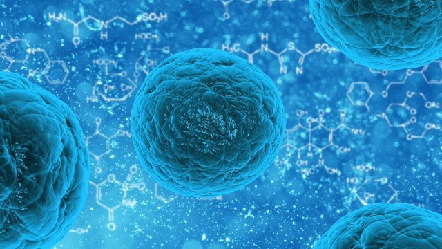 Scientists engineer one protein to fight cancer and regenerate neurons