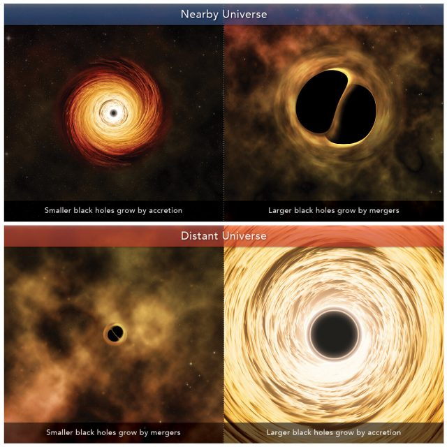 Scientists shed light on growth of black holes
