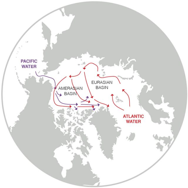 Arctic Ocean changes driven by sub Arctic seas