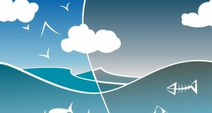 Ecosystem degradation could raise risk of pandemics