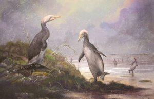 New Zealands ancient monster penguins had northern hemisphere doppelgangers