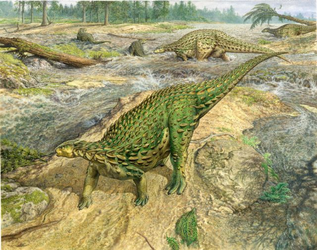 First complete dinosaur skeleton ever found is ready for its closeup at last