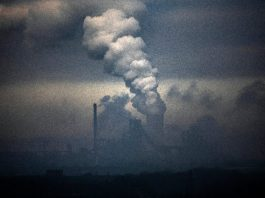 Lockdown emissions fall will have no effect on climate