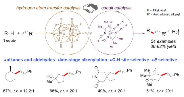 New method for late stage functionalization of carbon hydrogen bonds