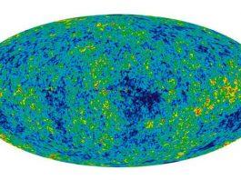 Gravity causes homogeneity of the universe