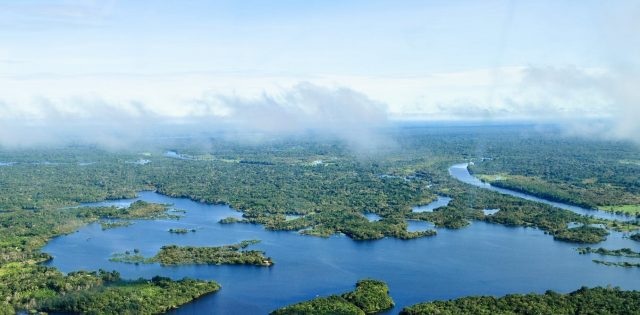 In the Amazon forest degradation is outpacing full deforestation