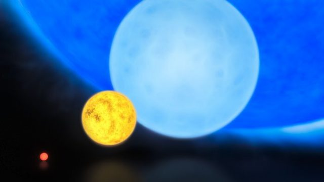 METISSE offers new insights into the lives of massive stars