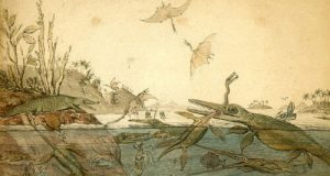 New study reveals how reptiles divided up the spoils in ancient seas