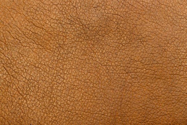 Producing leather like materials from fungi