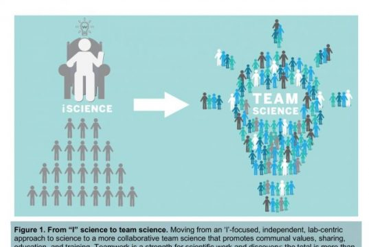 Researchers trace the outlines of two cultures within science