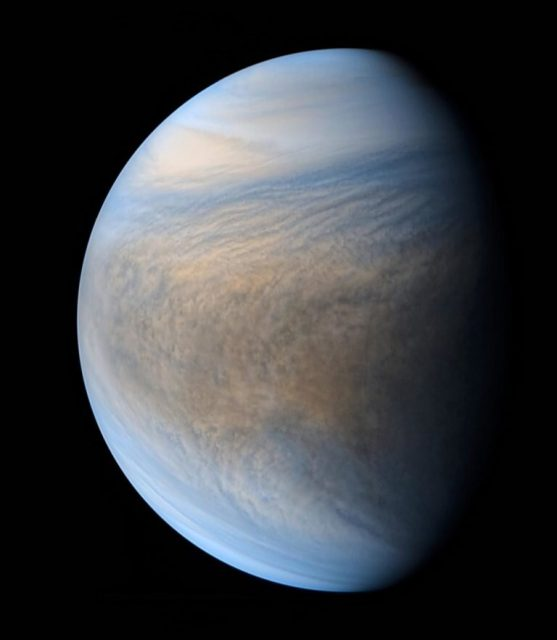 Venus might be habitable today if not for Jupiter